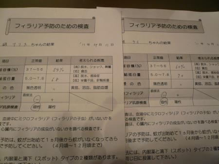 譁ー縺励>+004_convert_20110411211349