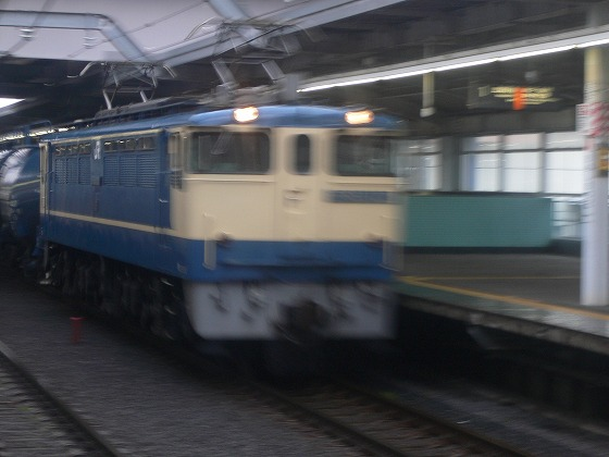 P1040081.jpg