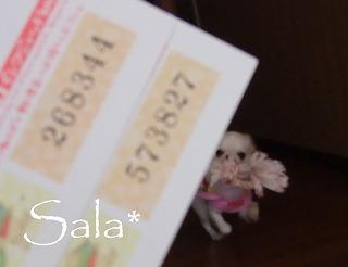 2012-01-25-07.jpg
