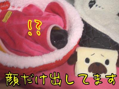 07.12.13.2.jpg