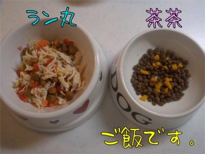 08.1.10.5ご飯
