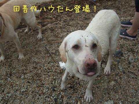 DSCF4038_20110802105910.jpg