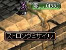 do8.jpg