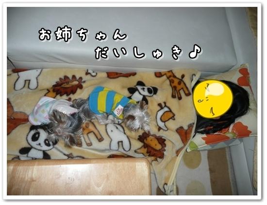 013_20111026064758.jpg