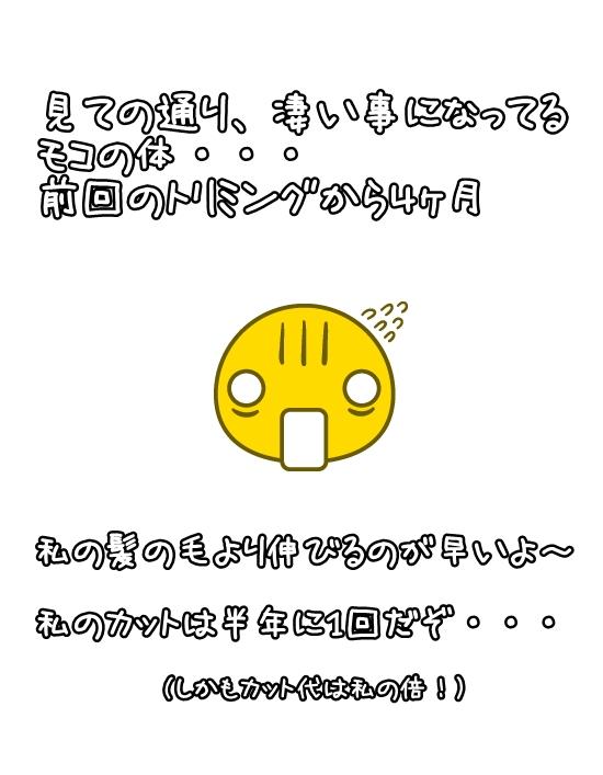 白背景 - コピー (3) - コピー - コピー - コピー