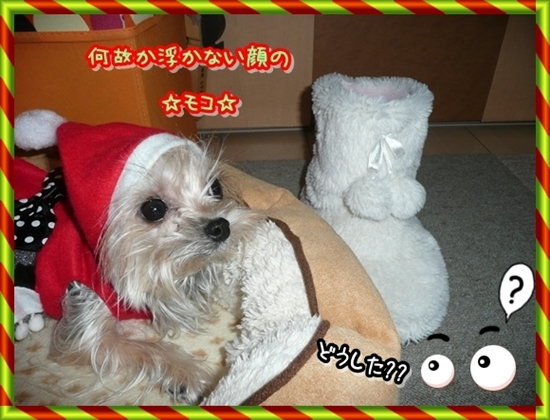 サンタさん待ち!