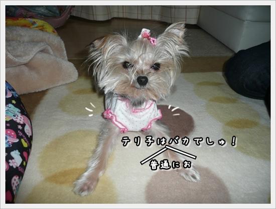 moko_20111022130819.jpg