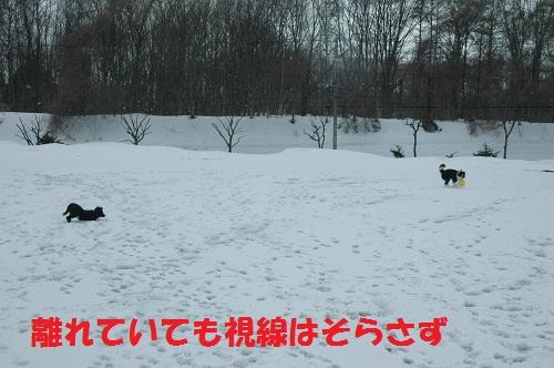 2012471.jpg