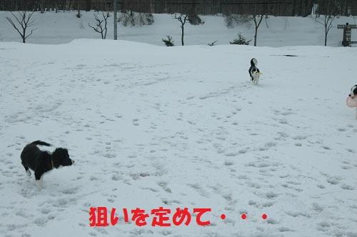 2012472.jpg