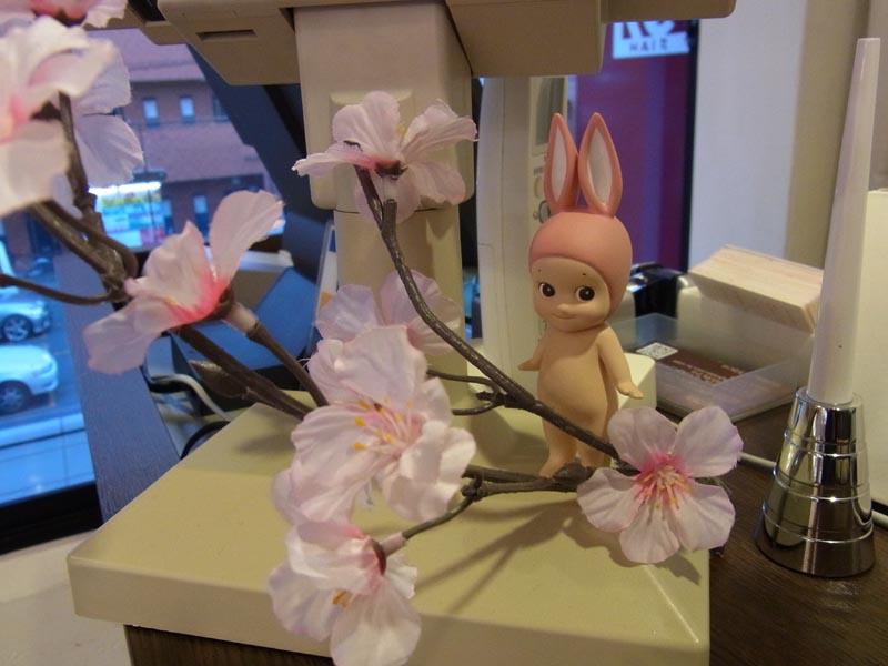 桜キューピー