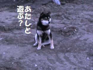 20080103164113.jpg