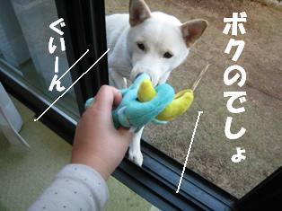 IMG_1273.jpg