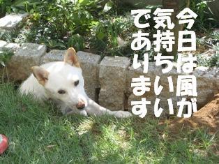 kimochii.jpg