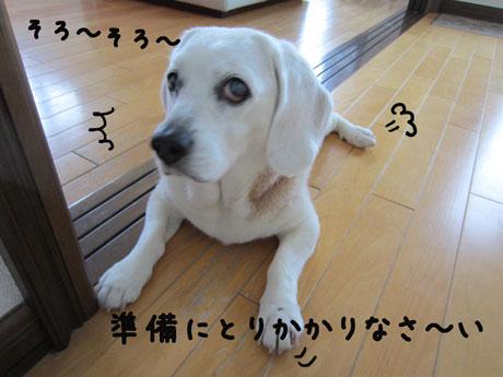 1_20110602181748.jpg