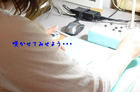 1_20110614141456.jpg