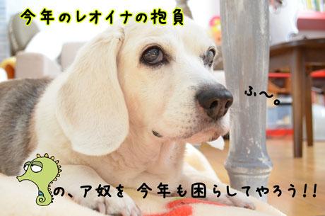 1_20111231232647.jpg