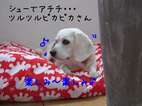 2_20110622155006.jpg