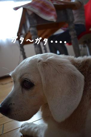 2_20110624161241.jpg