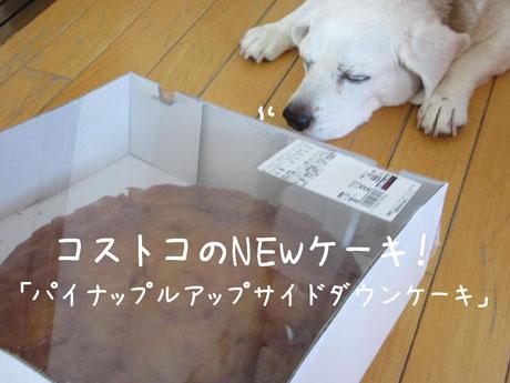 2_20110716163229.jpg