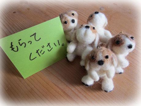 2_20120112111533.jpg