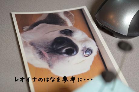 3_20110614141455.jpg