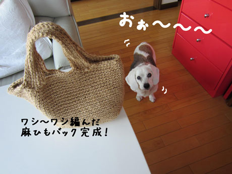 3_20110630104119.jpg