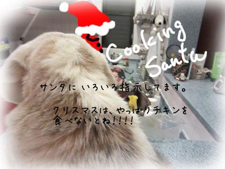 3_20111224181030.jpg