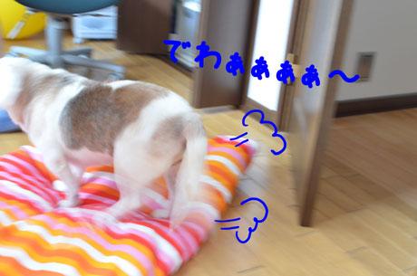5_20110624161240.jpg