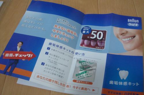 DSC09011_convert_20111104213027.jpg