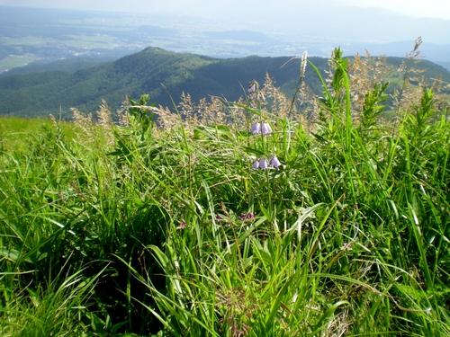 車山高原、白樺湖 (44)