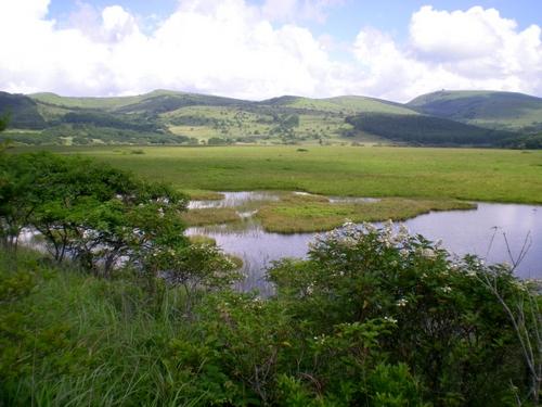 八島湿原 (24)