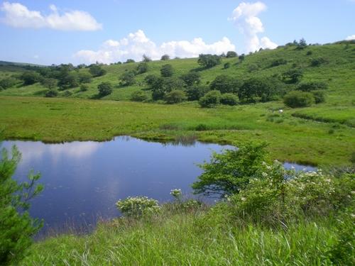 八島湿原 (25)
