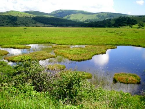 八島湿原 (27)