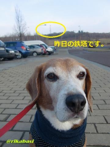 CIMG2647_20120319234447.jpg