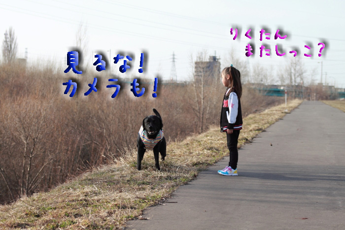 20110409-003-003.jpg