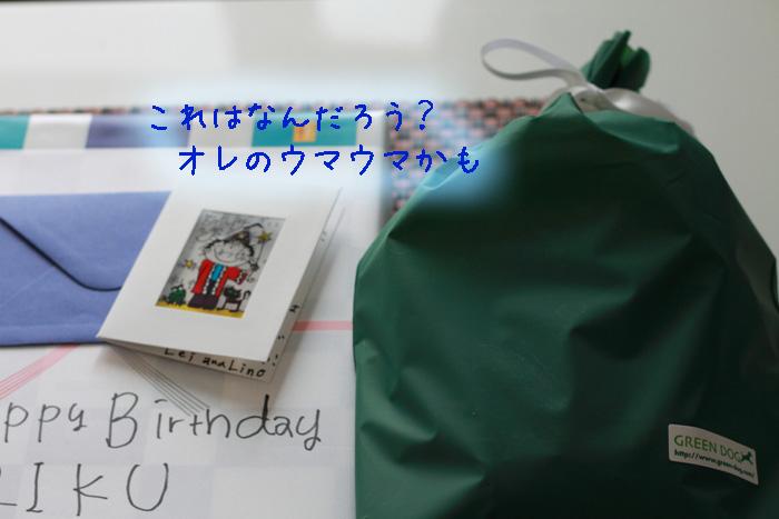 20110421-010.jpg