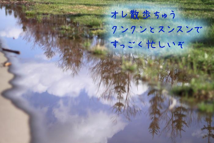 20110429-001.jpg