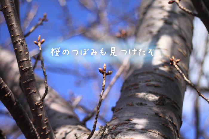 20110429-005.jpg