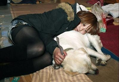 仙台近郊の避難所で愛犬と寄り添う女性