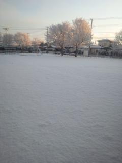 DVC00434_20111217124301.jpg