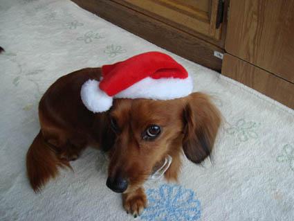 クリスマス子1