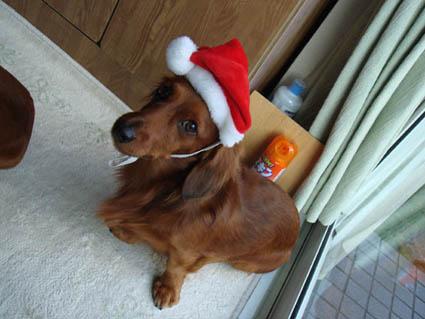 クリスマス父1