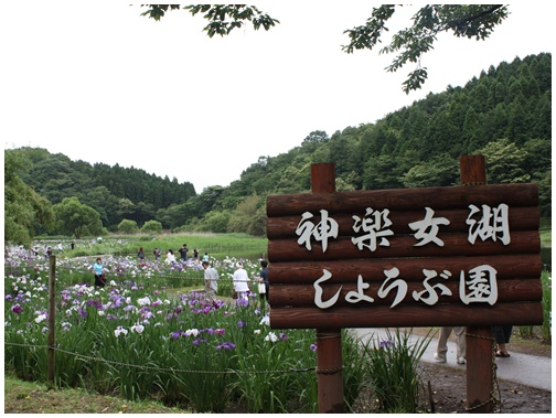 201106260.jpg