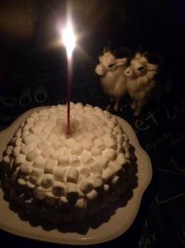 母・誕生日2011