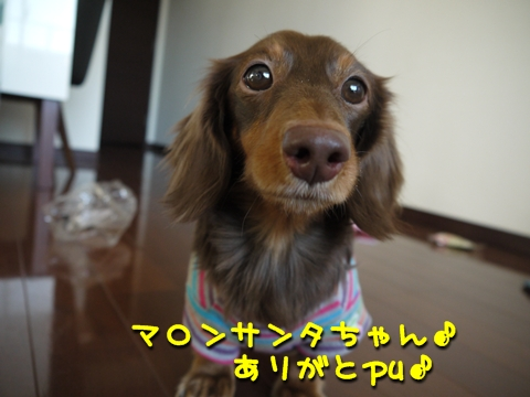 P1140853.jpg