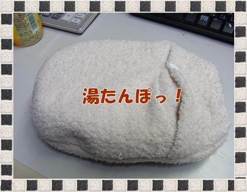RIMG0108.jpg