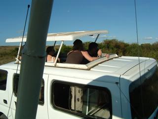 safari_car.jpg