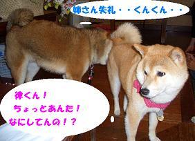 CIMG2061_edited.jpg