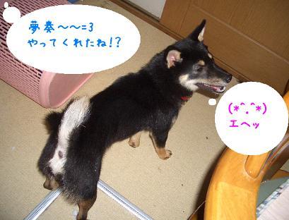 CIMG3346_edited.jpg