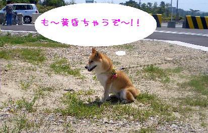 CIMG5461_edited.jpg
